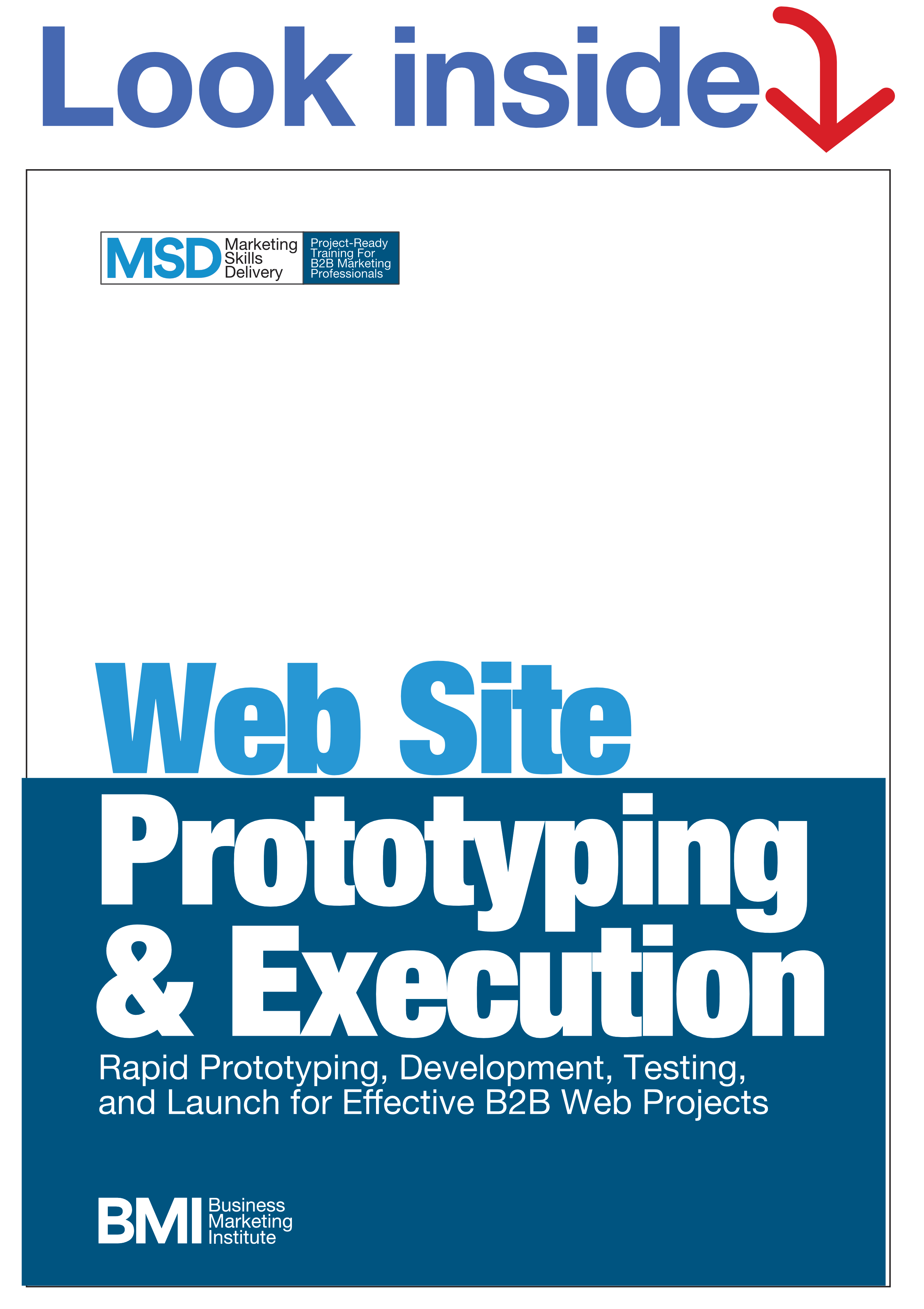 MSD10 Web Site Execution